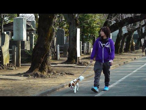 【スト5】ELEAGUE – SFV Invitational, Player Profile: Daigo Umehara